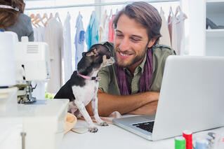 Can you increase employee satisfaction with dogs at work?